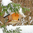 Bird feeder — Stockfoto #18862761