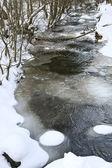 Winter creek — Stock Photo