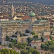 Budapest Royal palace — Stock Photo