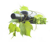 Wine bottle and grapes — Stock Photo