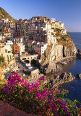 Manarola village — Stockfoto