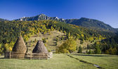 Carpathian autumn landscape — Stock Photo