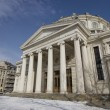 Romanian Athenaeum — Stock Photo #22220325