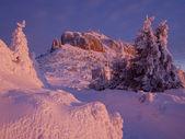 Winter mountain sunset — Stock fotografie