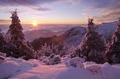 Kış günbatımı — Stok fotoğraf