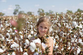 Portrait of a girl in a field of cotton — Stock Photo