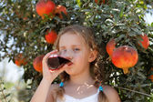 Young girl drinking pomegranate juice — Stock Photo