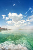 Dead Sea landscape on a summer — Stock Photo