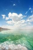 Paysage de la mer morte sur un été — Photo