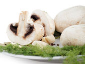 Field mushrooms — Stock Photo