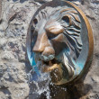 Stock Photo: Lion fountain