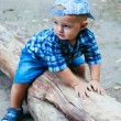 Baby boy sitting on a log  — Stock Photo