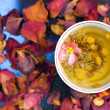 Fragrant flower tea — Stock Photo