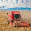 Combine at the harvest in autumn — Stock Photo