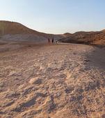 Joint active walk through the desert — Stock Photo