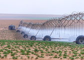 Large irrigation systems arable crops — Stock Photo