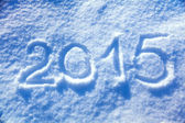 2015 new year snow — Stock Photo