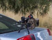 Sniper rifle — Stock Photo