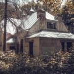 Abandoned house — Stock Photo #46581419