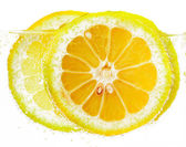 Lemon slices in vesicles  — Foto de Stock