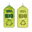 Stock Vector: Recycling Green Tag Icons