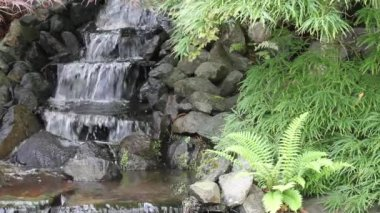 Waterfall in Backyard Zen Garden with Plants — Stock Video