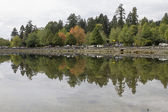 Stanley Park in Vancouver BC Canada — Stock Photo