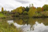 Ponte de madeira sobre o lago no outono — Foto Stock