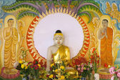 Enlightened Buddha Sitting Under the Bodhi Tree — Stock Photo
