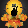 Halloween Black Cat On Carved Pumpkin Illustration — Stock Vector