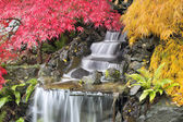 Backyard Waterfall with Japanese Maple Trees — Stock Photo