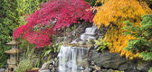 Backyard Waterfall with Japanese Maple Trees in Fall Panorama — Stock Photo