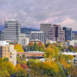 Portland Oregon Downtown Skyline with Mt Hood — Stock Photo #14169688