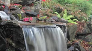 Timelapse of Waterfall in Backyard Garden in Autumn — Stock Video