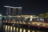 Singapur merlion park bei nacht — Stockfoto