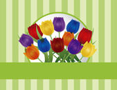 Colorful Tulips Greeting Card Illustration — Stock Vector