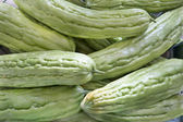 Bitter Melon Closeup — Stock Photo