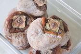 Sun Dried Persimmons Closeup — Stock Photo