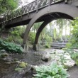 Stock Video: Water Creek with Plants, Trees and Wood Bridge in Crystal Springs Garden in Portland Oregon 1920x1080