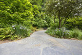Slate Stone Garden Path with Plants — Foto de Stock