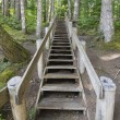 Wood Staircase in Hiking Trail — Stock Photo