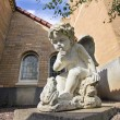 Cherub with Frog Cast Stone Garden Statuary — Stock Photo #27679323
