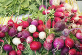 Heirloom Radish Bunches at Farmers Market — Stock Photo