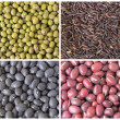 Stock Photo: Beans and Grains Collage