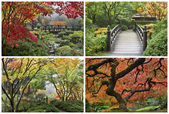 Japanese Garden in the Fall Collage — Stock Photo
