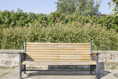 Park Bench with Fountaingrass and Rose Bushes — Stock Photo