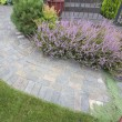 Stock Photo: Front Yard Garden Curve Paver Path Top View