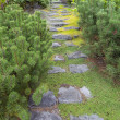 Natural Stone Steps to Frontyard Garden — Stock Photo