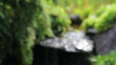 Out of Focus Sparkling Bokeh of Water Feature and Greens Plants with Soothing Sound of Fountain in Garden 1080p — Stock Video