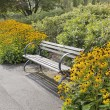 Park Bench with Black-Eyed Susan Flowers — Stock Photo
